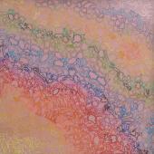 serie Silicona, 2013 / Acrílico, collage con ligas de silicona, lienzo / Dimensiones variables